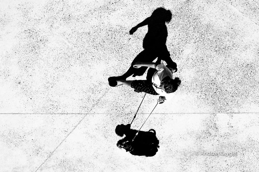 Katowice, 13.06.2016 Parę dni temu spotkałem tę parkę. Siedziałem  sobie na wieży Warszawa a oni spacerowali po Muzeum Śląskim. Słońce grzało, wiatr wiał, przyjemnie. Warto czasem posiedzieć na wieży.